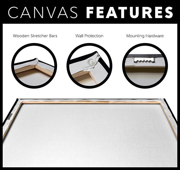 Canvas Features   VigoTheCarpathian.com